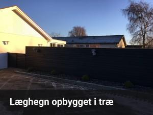 have-hegn-02.2-tekst
