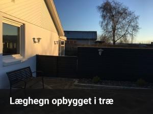 have-hegn-02.3-tekst
